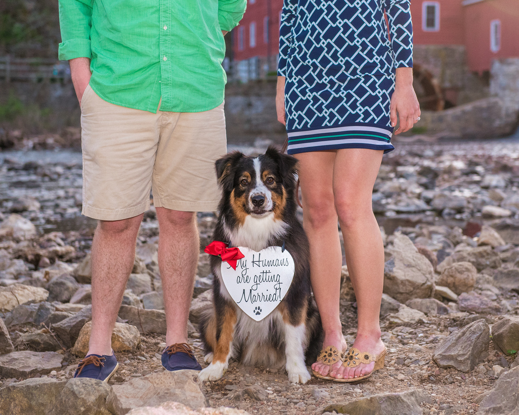 13,cute-sweet-fun-must-have-engagement-picture-clinton-hunterdon-county-cherryville-photography-nj-wedding-photographer-dog